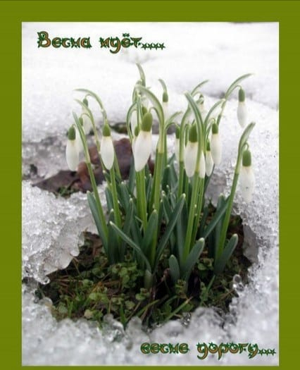 Весна наступает!