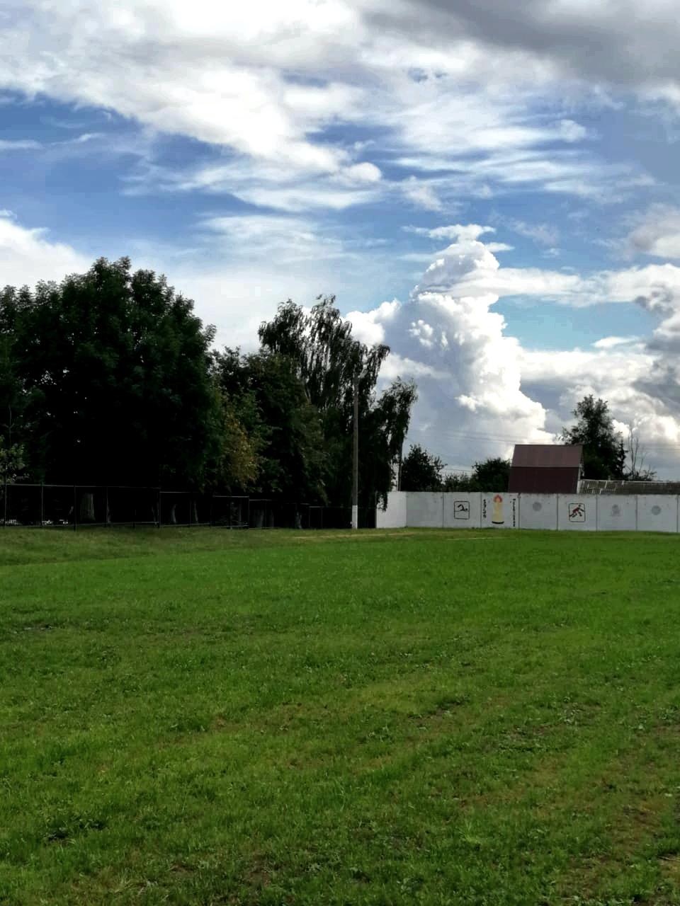 Футбольный газон на стадионе активно растет